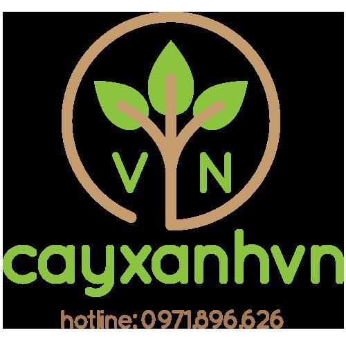 Cây xanh Việt Nam