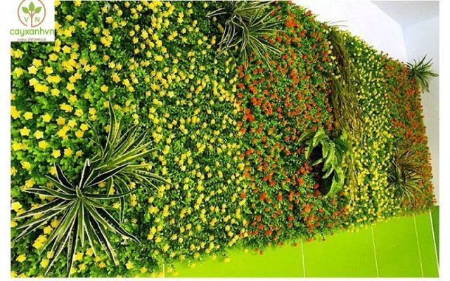 Dịch vụ trang trí và trồng thảm cỏ của cây Xanh Việt Nam