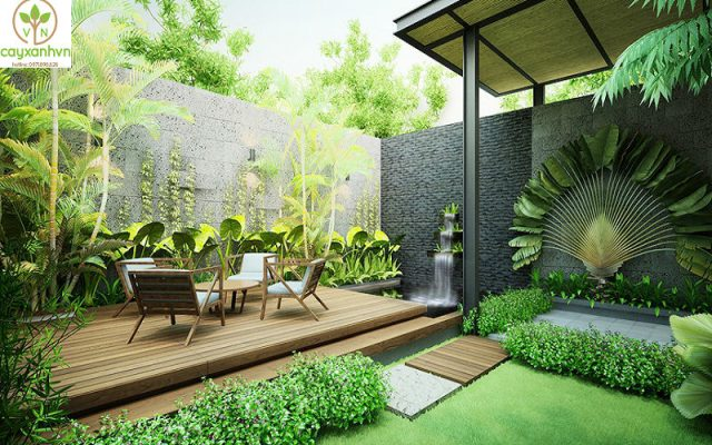 Dịch vụ thiết kế sân vườn của cây Xanh Việt Nam
